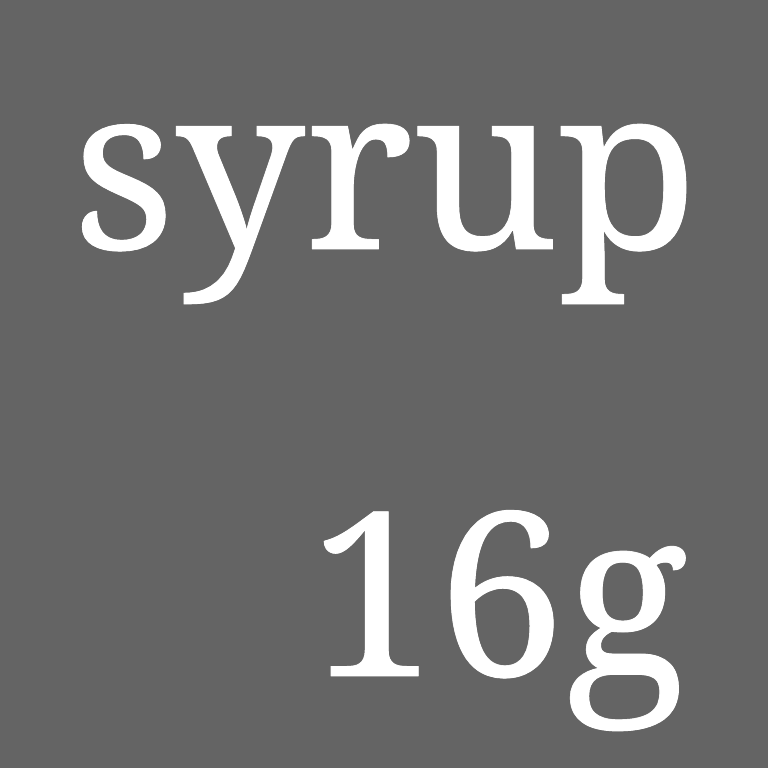 syrup16g DVD『the last day of syrup16g』